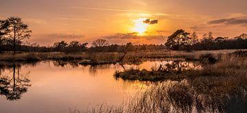 Zonsondergang op de Heide. van