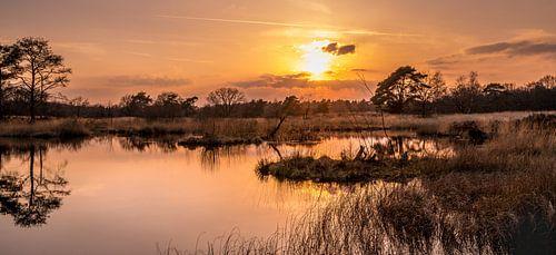 Zonsondergang op de Heide.