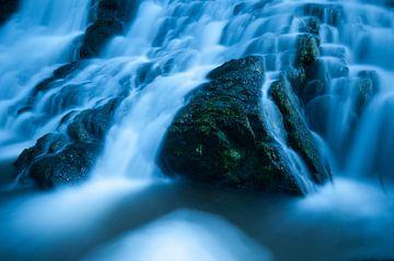 cold water van Anne Pfaff