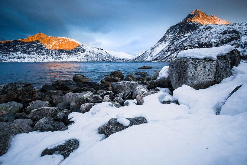 Winterlandschap in Senja / Lofoten, Noorwegen van Martijn Smeets