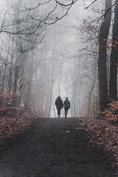 Herfstwandeling in de mist van Marc-Sven Kirsch