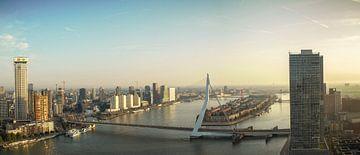 Panorama Rotterdam met Erasmusbrug en Zalmhaventoren van Ilya Korzelius