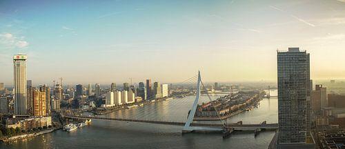 Panorama Rotterdam met Erasmusbrug en Zalmhaventoren