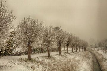 veere in de sneeuw sur anne droogsma