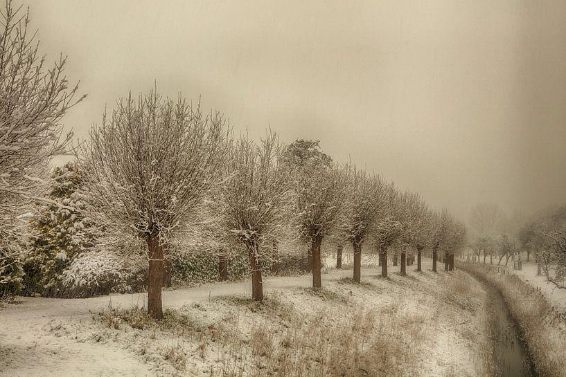 veere in de sneeuw van anne droogsma