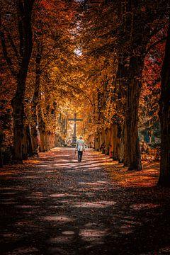 Herfstvibes Berlijn van Iman Azizi
