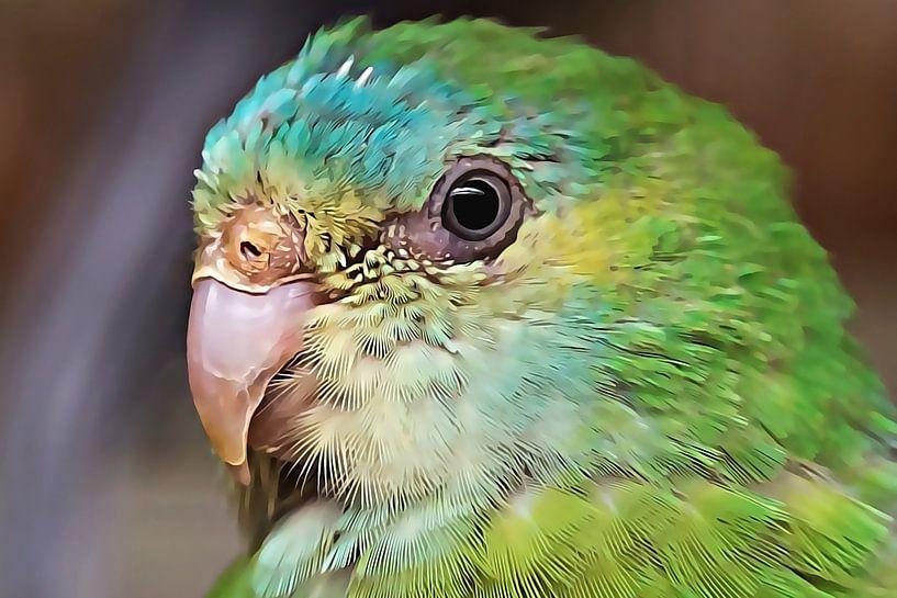 Groen parkiet (close-up) van Art by Jeronimo