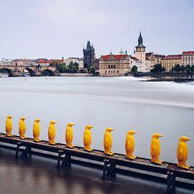 Prague – Yellow Penguins / Museum Kampa van Alexander Voss