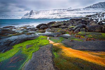 Verse sneeuw aan de steile kust van Denis Feiner