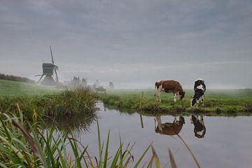 Ein nebliger Sonntagmorgen in guter Gesellschaft von Daniel Van der Brug