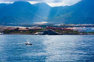 Uitzicht op Tenerife van Ilse Fokker