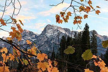 Bergen in een lijstje van bladeren