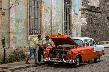 panna dans La Havane sur Aad de Vogel