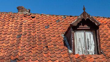 Dachziegel mit Gaube gefallen von Corrie Ruijer