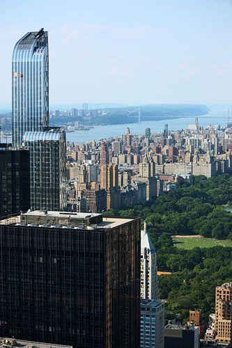 new york city ... concrete jungle I