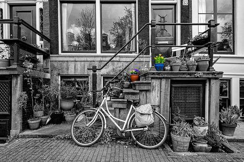 Welkom in Amsterdam
