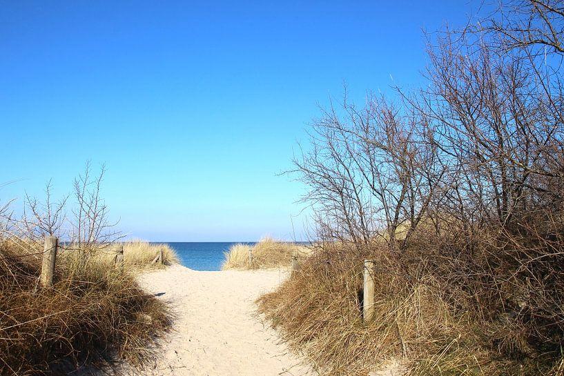 Strandaufgang im Winter von Ostsee Bilder