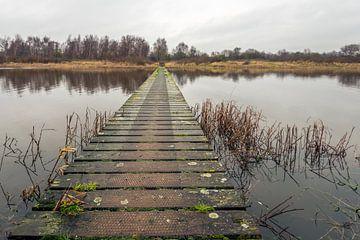 Lange houten brug van Ruud Morijn