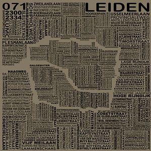 Kaart van Leiden van Districto Prints