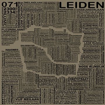 Karte von Leiden von Stef Van Campen