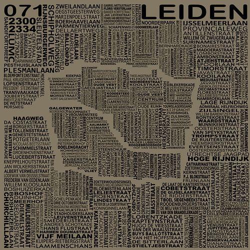 Kaart van Leiden van