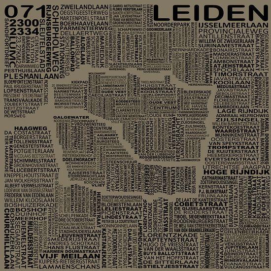 Kaart van Leiden van Stef Van Campen