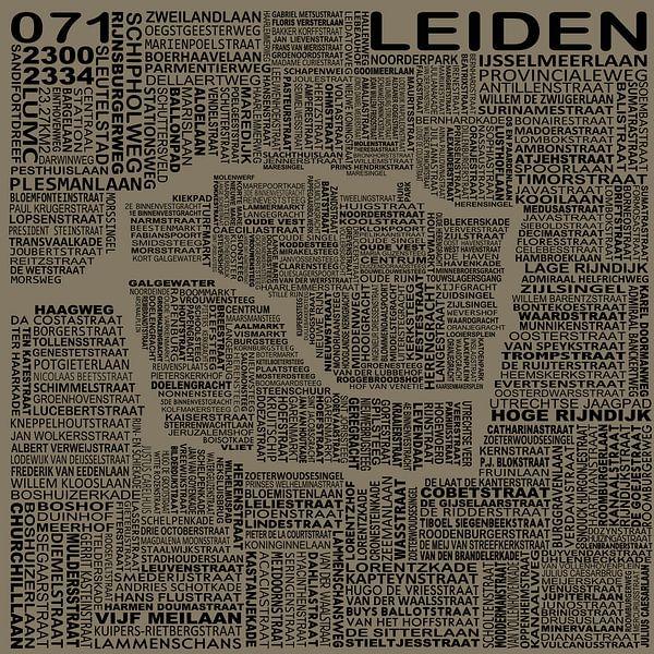 Kaart van Leiden