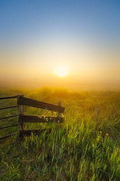 Sonnenaufgang über dem Wieden an einem schönen nebligen Frühlingsmorgen im Mai. von Bas Meelker