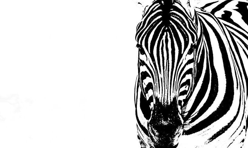 Abstracte strepen van Sharing Wildlife