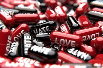 Liefde of haat - het is jouw keuze van Jörg Hausmann