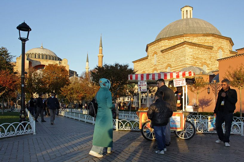 Hagia Sophia (3) van Antwan Janssen