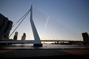 Erasmus Brücke während des Sonnenuntergangs von André Muller