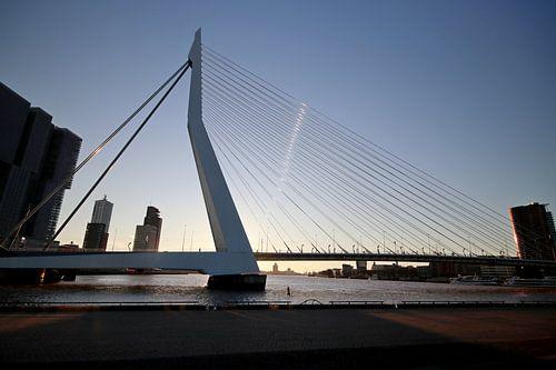 Erasmus Brücke während des Sonnenuntergangs von