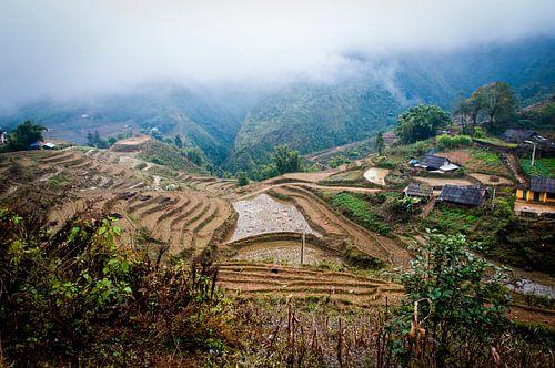 Rijstveld Vietnam, ricefields in the clouds