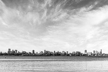 Skyline Rotterdam II van René Mourik
