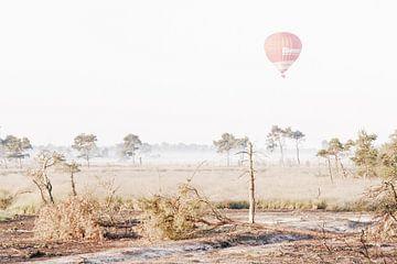 Luchtballon boven de Kalmthoutse Heide van Bruno Hermans