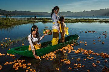 Jonge meisjes offeren oranje bloemen op het Batur meer in Bali, Indonesie van Anges van der Logt