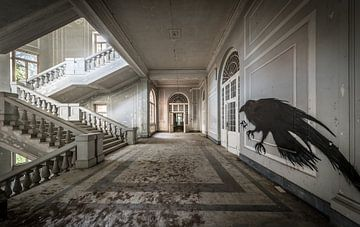 Escalier dans un grand bâtiment, avec l'art d'oiseaux sur le mur sur Inge van den Brande