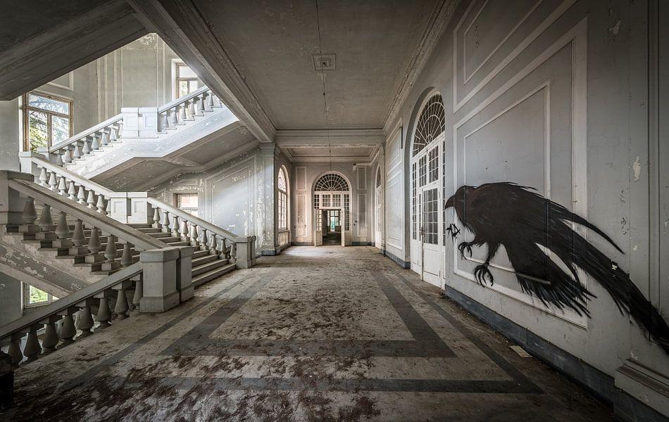 treppe in gro en geb uden mit vogel kunst an der wand poster inge van den brande ohmyprints. Black Bedroom Furniture Sets. Home Design Ideas