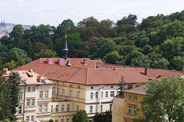 Prag - Ein Blick über das Kloster von Wout van den Berg