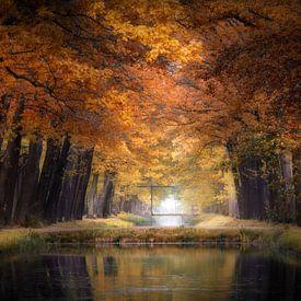 Water Of Love van Kees van Dongen