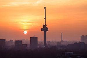 Rotterdam Dreams van Claire Droppert