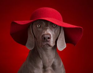 La Dame en rouge sur Raoul Baart