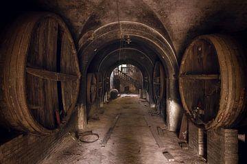 Verlaten Wijnkelder. van Roman Robroek