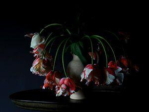 Vaas met Rembrandt tulpen van