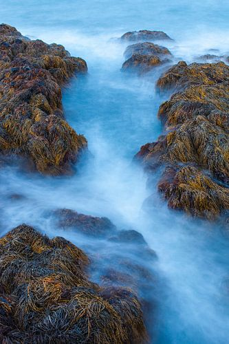IJslandse kust van DuFrank Images