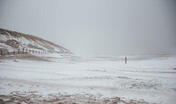 Sneeuwstorm aan zee van Sanne Dost