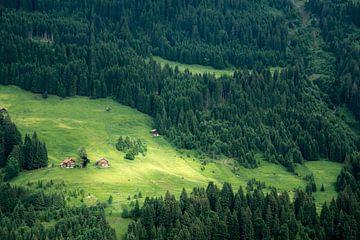 L'alpage en Autriche en été sur Reis Genie