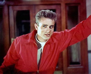 James Dean - Rebel Without A Cause (1955) von Bridgeman Images