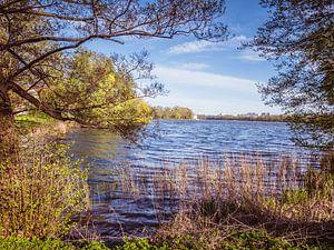 See an der Mecklenburgische Seenplatte in Deutschland von Animaflora PicsStock